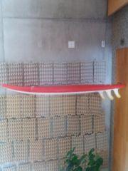 Surfboard Softboard Foamie Wellenreiter