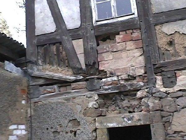 Wasserschaden , Schimmel Baugutachter berät die Haus - Käuferin in ...