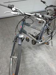 Fahrrad Schwinn für Erwachsene Citybike