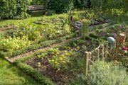 Schrebergarten Freizeitgrundstück Gartengrundstück