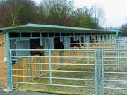 Weidehütten Außenboxen viele Größen möglich