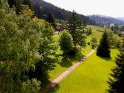 Vermietung Wohnungen In Pfalzgrafenweiler Günstige Mietangebote