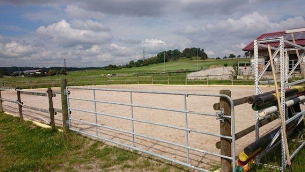 Paddockboxen zu vermieten » Pferdeboxen, Stellplätze